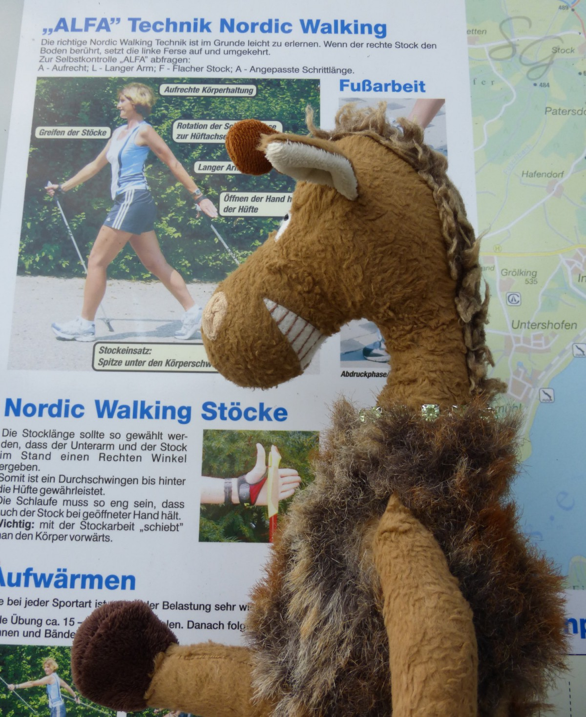 Isch übe Nordic Walking